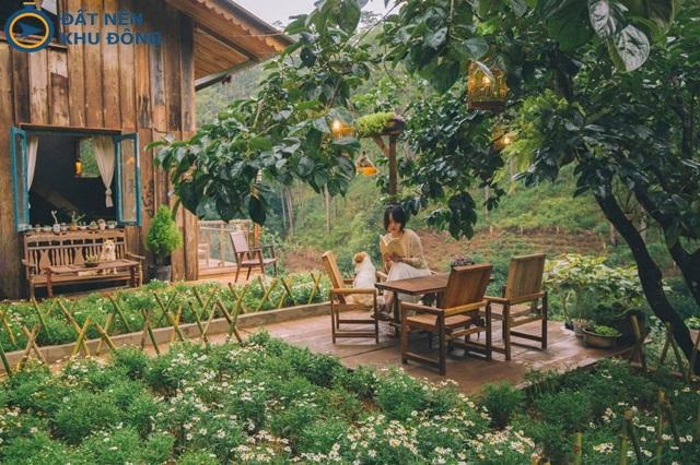 """Xây căn nhà gỗ nhỏ nhỏ """"bỏ phố về rừng"""""""